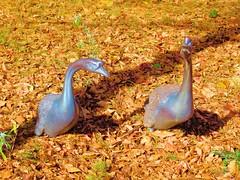 Geese Sculpture (rsiler53) Tags: sculptures columbuszooandaquarium wildlifesculptures sonydschx100v