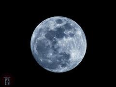 Waxing Gibbous Moon 98% illuminated (randyandy101) Tags: californiacentralcoast cambria california cambriaca cambriapinesbythesea moon moonstonebeach lunar luna phase waxing gibbous waxinggibbousmoon astrophotography night