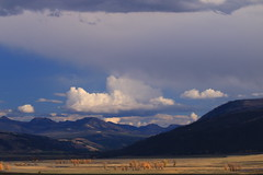 Landscape of a valley (alideniese) Tags: lamarvalley yellowstonenationalpark wyoming usa landscape nature mountains sky clouds light shadow weather trees distance nationalpark