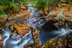 Muskoka In The Fall (vernonbone) Tags: 1855kitlens 2016 autumn d3200 lens october ontario landscape leadinglines longexposure nikon outside street water