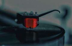 listen to The Edge (try...error) Tags: edge macromondays macromonday fuji xpro xpro1 fujifiilm linn sondek troika u2 bono vinyl lp lp12 macro red rot