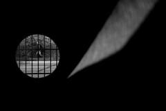 (Mikko Luntiala) Tags: 007 2016 afsnikkor2470mmf28ged bw blackandwhite d600 finland helsinki ihminen jamesbond katukuvaus lokakuu man mies mikkoluntiala nikond600 october person streetphotography suomi
