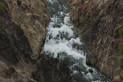 """Grand Canyon of the Yellowstone • <a style=""""font-size:0.8em;"""" href=""""http://www.flickr.com/photos/63501323@N07/30188961144/"""" target=""""_blank"""">View on Flickr</a>"""