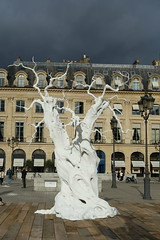 Ugo Rondinone @ Creepy white trees @ Place Vendme @ Paris (*_*) Tags: paris france europe city autumn automne fall 2016 october cloudy vendome place ugorondinone art tree white aluminium fiac