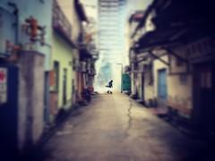 Backlane vape (Indraven84) Tags: mosquitoes shophouse tiltshift iphone6plus smoke pestcontrol antizika zika singapore lorong backlane deskerroad