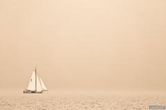 Heaven on earth (Anneke Jager) Tags: annekejager mood moody sfeer sailing zeilboot zeilen platbodem water wasser watersport boat boats sailingboot monochrome outdoor minimalism wow brilliant