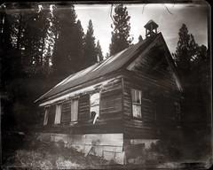 Forest City School 2016 (efo) Tags: bw film 8x10 xrayfilm kodaktmat forestcity california school abandoned ghosttown ilexacuton215mmf48 wehmanfieldcamera