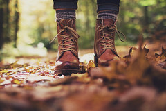 """This is the hour of fallen leaves, their dust scattered over the earth.."" ~Neryda~ (Sandra H-K) Tags: feet boots frye leaves autumn autumnleaves ontheground trees forest nature bokeh bokehlicious brown me dof outside green day sunshine sunlight daylight foliage"