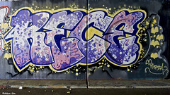 Woerden & Alphen ad Rijn Graffiti (Akbar Sim) Tags: woerden alphenaanderijn holland nederland netherlands graffiti akbarsim akbarsimonse rece