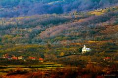 (Alin B.) Tags: alinbrotea nature autumn fall toamna rusty rustic tree forest sunset