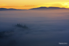 Foggy sunrise (Agrippino Salerno) Tags: valdorcia tuscany it poderebelvedere fog misty countryfarm sanquiricodorcia agrippinosalerno canon manfrotto colors hills trees cypress morning dawn