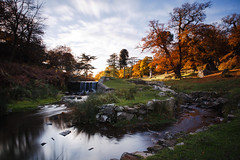 Emotion (Martin T Eyles) Tags: bradgate park autumn long exposure landscape stream canon 2470 leicester united kingdom deer animal wildlife lee filter big stopper 10 newtown linford charnwood forest