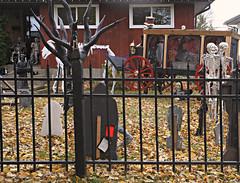 Three Days Before Halloween (Cindy's Here) Tags: haunted halloween behindbars graves skeletons thunderbay ontario canada canon ansh scavenger7