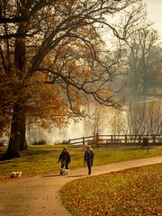 Out For A Walk (aquanout) Tags: park scenery people trees lake kent landscape grass path dogs