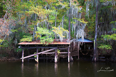 Rustic Boat Dock (ShutterByMe) Tags: autumn baldcypress bayou bigcypressbayou caddolake cypress cypressswamp cypresstrees dock forest harrisoncounty lake landscape moss plant red reflection river slough spanishmoss swamp texas tree trees water