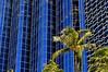 Along Cooke Street (jcc55883) Tags: building architecture reflection abstract cookestreet kapiolaniboulevard kakaako honolulu downtownhonolulu hawaii oahu nikon nikond3200 d3200