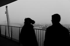 View from the Elbphilharmonie/Hamburg (Hg T) Tags: hamburg elbphilharmonie schwarzweis blackandwhite fujifilm fuji x20