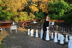 IMG_8880_Fotor01 (Ela's Zeichnungen und Fotografie) Tags: hannover congresszentrum stadt stadtpark landschaft natur herbst laub bäume blätter sonnenlicht person frau schach spiel