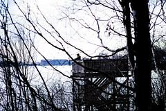 Spotter Spotted (Jori Samonen) Tags: man birdwatching tower tree snow ice viikki helsinki finland nikon d3200 1050 mm f28