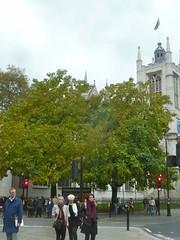 P1390242 Parliament Sq, St Margaret's church (londonconstant) Tags: londonconstant costilondra london architecture chelsea westminster promenades streetscapes