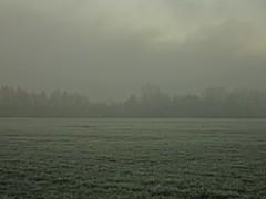 Unfocus (Bricheno) Tags: dalmarnock bricheno glasgow fog frost scotland szkocja scozia scoia schottland cosse escocia esccia    bridge railway trees