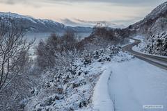 Loch Ness after December snowfall. (Scotland by NJC.) Tags: scotland lochness snow blizzard snowstorm sleet snowdrift snowflake flurry ثَلْج neve 雪 snijeg sníh sne sneeuw nieve lumi neige schnee χιόνι 눈 snø lakes lochs reservoirs waters meres tarns ponds pool lagoon lago 湖 jezero sø meer järvi lac see λίμνη 호수 innsjø jezioro озеро trees foliage vegetation arboretum شَجَرَة árvore 树 drvo strom træ boom árbol puu arbre baum δέντρο albero 木 나무 tre drzewo copac дерево