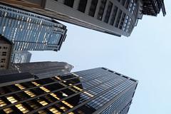 Limited Sky (Raúl Abdo) Tags: colorphotography color newyorkcity harlem eastharlem wallst photography candidphotography candids portraits trainphotography subwayphotography ny bronx