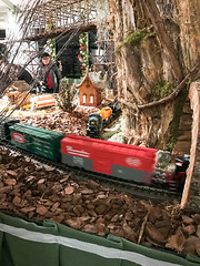 HTS-26 (Peter Parides) Tags: unitedstates christmas trains newyorkbotanicalgardens newyork new york city