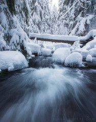 Winter (terenceleezy) Tags: mounthood mthood winter snow pdx portland shotoniphone7 shotoniphone7plus