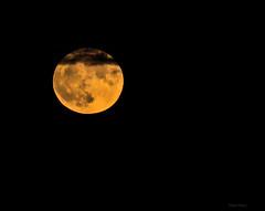 One night (Robyn Hooz) Tags: luna notte nuvole cerchio perfetto superluna november novembre sottomarina full piena
