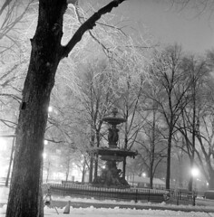 020459 02 (ndpa / s. lundeen, archivist) Tags: nick dewolf nickdewolf blackwhite photographbynickdewolf tlr bw 1959 1950s february winter boston massachusetts beaconhill night nighttime wintersnight park common bostoncommon tree branches snow snowy snowfall trees film 6x6 mediumformat monochrome blackandwhite light lights railing fountain brewerfountain