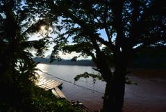 Luang Prabang (makingacross) Tags: laos pdr luang prabang luangprabang nikon d3000 louangphabang luangphabang phabang mekong river sunset trees