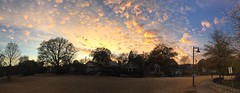 351/366 (moke076) Tags: 2016 365 366 project366 project 365project project365 oneaday photoaday vsco vscocam cell cellphone iphone mobile cabbagetown pano panoramic sky sunset evening beautiful nature clouds color park old houses atlanta ga