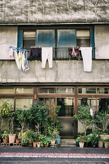 Hung out to dry (Camera Freak) Tags: japan tokyo kameari house laundry clothes plants garden traditional shitamachi outdoor architecture frontage building old washing drying hanging 日本 東京 亀有 葛飾区 洗濯 下町