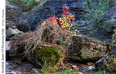 Rockfall, Base Of Rockway Falls (jwvraets) Tags: waterfall rockwayfalls niagaraescarpment rockway stcatharines fifteenmilecreek autumn rockfall boulder fallcolour red yellow wildgrapes opensource rawtherapee gimp nikon d7100 nikkor18105mmvr