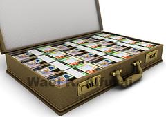 (Wael Alfuzai   ) Tags: money bank banking  banknote