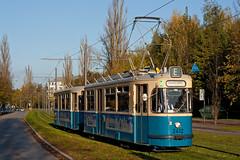 Nach dem Abstecher nach St. Emmeram fhrt Wagen 2412 ber die Neubaustrecke an der ehemaligen Ziegelei vorbei (Tramgeschichten) Tags: 30 mnchen tram streetcar sfm jahre 2412 mwagen 3407 strasenbahnfreunde