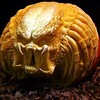 "Happy #Halloween Towelites! #pumpkin #predator #DFATowel • <a style=""font-size:0.8em;"" href=""http://www.flickr.com/photos/125867766@N07/15056760733/"" target=""_blank"">View on Flickr</a>"