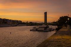 Guadalquivir y Torre Pelli