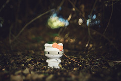 Halloween 2014 (isayx3) Tags: hello nerd toy toys nikon angle forrest bokeh 28mm wide kitty sigma edward loot block mummy f18 crate tones enchanted d800 mcgowan plainjoe isayx3