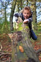 Ethan (photographic-leigh) Tags: tree fun happy climb flying woods joy superman adventure explore