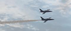 Patrouille Sparflex (sknot69) Tags: france meeting airshow albatros l39 roanne patrouillesparflex