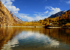 Golden Autumn (NotMicroButSoft (Fallen in Love with Ghizar, GB)) Tags: autumn water river lakes ghizar phandar gupis khalti gilgitbaltistan