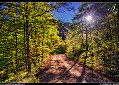 Enlightenment (TranceVelebit) Tags: road autumn light mountain forest oak afternoon shadows croatia lika dinaricalps dinaridi lickapljesivica