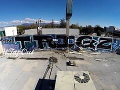 TRIGZ Tribute (UTap0ut) Tags: california art cali graffiti la los paint angeles socal cal graff trigz versuz utapout