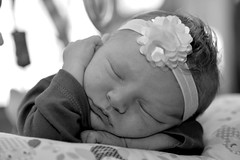 DSC_1535-003 - Ivy (youngryand) Tags: sleeping portrait blackandwhite bw baby cute girl monochrome mouth nose ginger eyes hands nikon infant innocent daughter young adorable ivy stranger highlights lips tired bow newborn ribbon youthful asleep dslr redhair tamron 90mm tummytime d610 nikondslr 100strangers nikond610