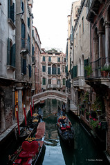 CMG_8348 (world's views) Tags: bridge venice italy canal gondola 2014
