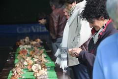 2014_Artziniega_Perretxiko erakusketa (aiaraldea.com) Tags: frontoia mikologia onddo perretxiko artziniega erakusketa ziza