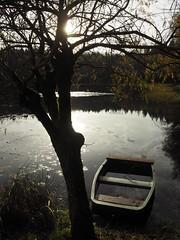 Reflets sur l'tang (merlaudp) Tags: lake tree nature landscape boat automn paysage arbre contrejour vosges barque etang