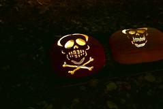 (theleakybrain) Tags: pumpkinnights pumpkin nights mnstatefair p1460149 halloween halloweenwalk minnesota jackolantern jack lantern